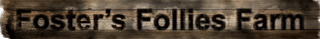 Fosters Follies Farm